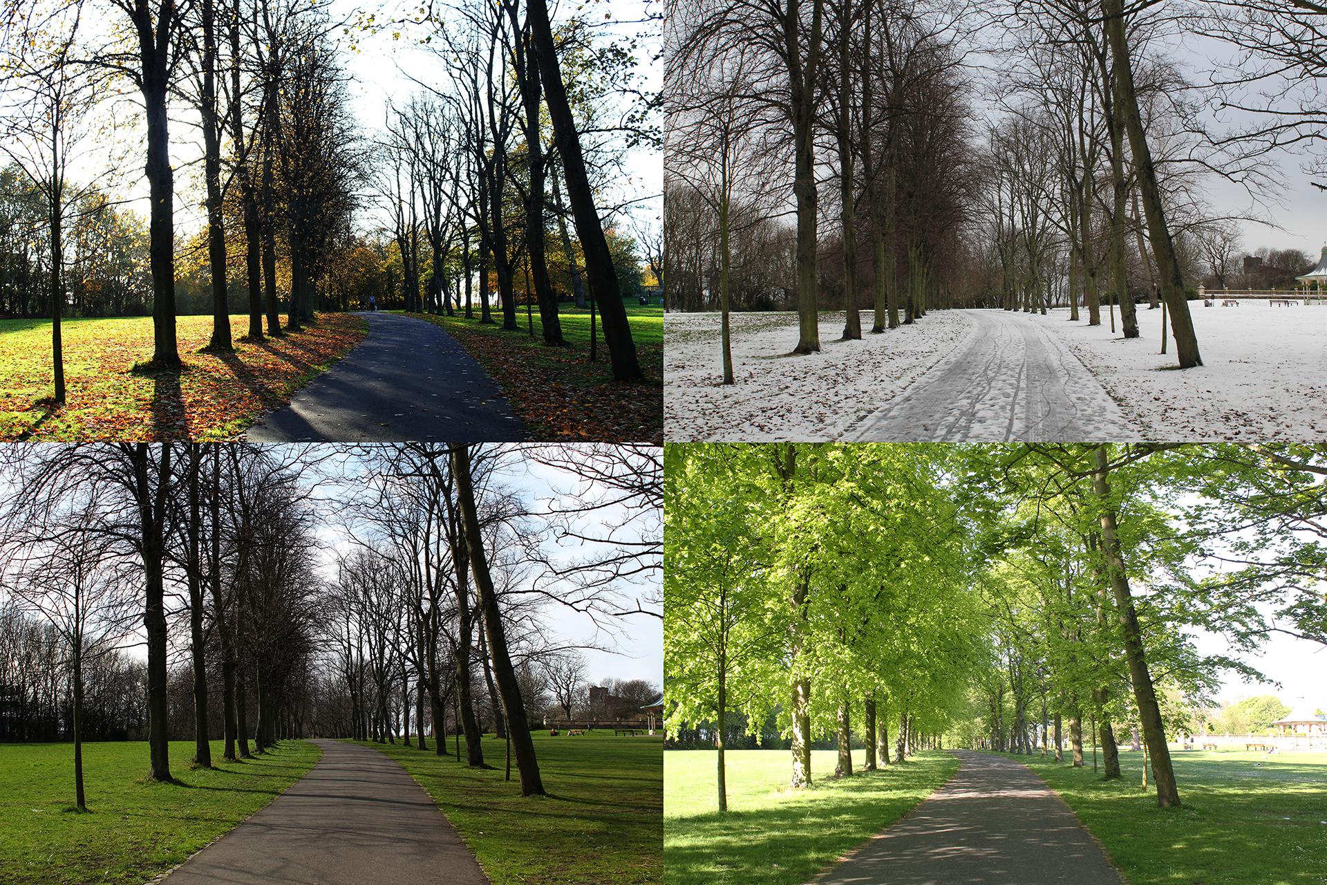 4 Seasons in Newcastle