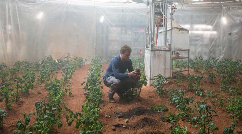 Matt Damon Might Have Been Right About Potatoes on Mars